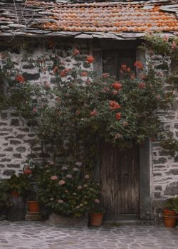 Old house with flowers by seianti