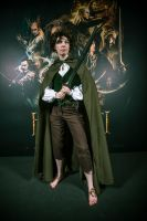 Frodo cosplay (Hobbit 2 premiere) by SilverCeleb