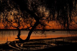 Last light on Bribie channel by wildplaces