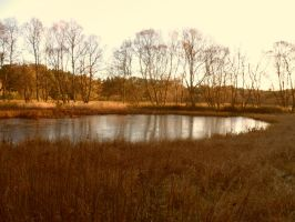 Stock ~ Frozen Pond by CaitlinDickson