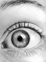 realistic eye - more detail by buzzelliArt