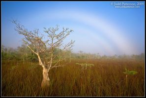 Fogbow by juddpatterson