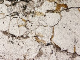 Cracked Rock Thin Section Texture 3 by GreenEyezz-stock