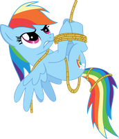 rainbow dash all tied up by romerboy55