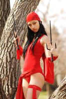 Vanessa Elektra 4a by jagged-eye