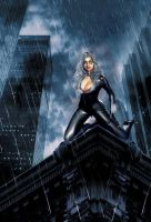 Black Cat: Evening Rain by psychegirl