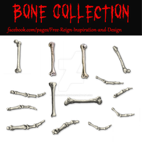 PNG Bone Collection by VelmaGiggleWink