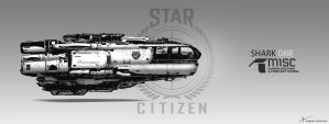 Fan Art - Star citizen Ship by Long-Pham
