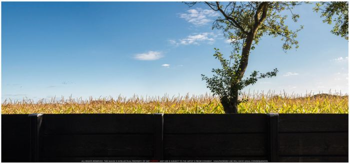 BEHIND THE FENCE by getcarter