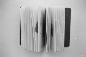 Film - L - open book by Picture-Bandit