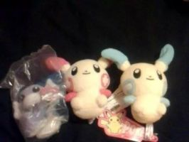 Pokemon Plushie And Pokedolls For Sale by HinataFox790