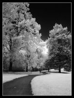 infra-red by MiscReant1512