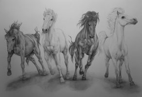The Four Horsemen by a-rueskov