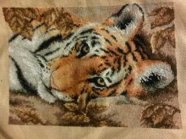 Beguiling Tiger - Project 13 by LeeLeeG2