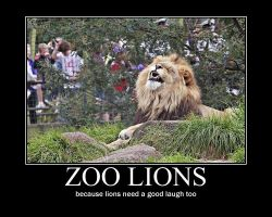 laughing zoo lions by xanimexartxloverx