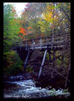 Old Bridge in Autumn I by Jenna-Rose