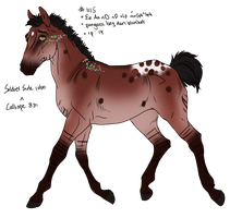 1115 Padro Foal Design for KTLasair by KimboKah