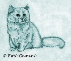 White Persian cat by Emi-Gemini