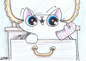 Funny cat sock puppet fun ACEO by KingZoidLord