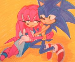 Sonic x Sky On The Beach by Sky-The-Echidna