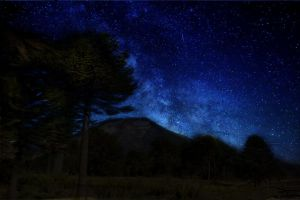 Night sky in Lonquimay by Bernardita99