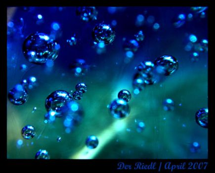 Blue Pearls by DerRiedl