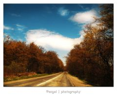 where the road may take you by engelll
