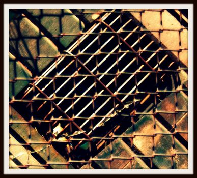 Kitty Behind Bars by LindaHulen