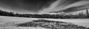 Athabasca River 5 pic pano BW by skip2000