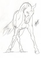 Chillin lineart by EqUiNeArTiStFoReVeR