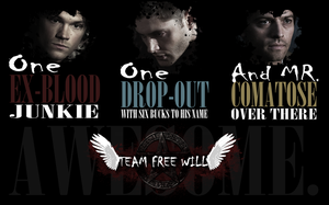 Team Free Will by InkWovenHeart