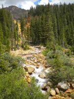 Mountain Stream by LadyClona