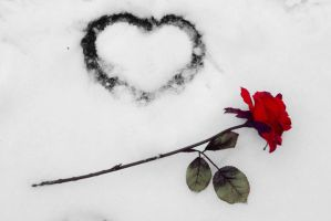 Is There Any Love by n0stalgiie