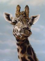 My Giraffe, using pastels by AngelaMaySmith