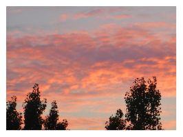 Sky in pink -1- by shadow-kat-ana