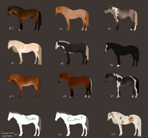 Horse Adopts - points all sold by Lone-Onyx-Stardust