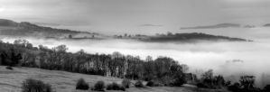 Vale of Evesham Black and White by s-kmp