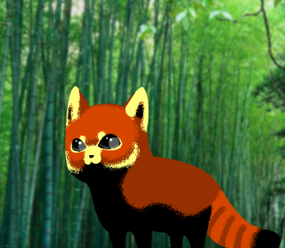 Red Panda. by No-More-Suffocation