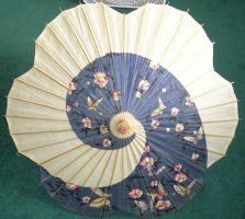Japanese Umbrella by Salamandelstro