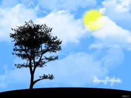 Daylight by Momillo