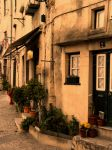 Peaceful street by 7DS7