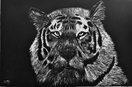 scratch art completed by zecketo