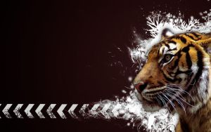 Tiger Vector Widescreen B by Sed-rah