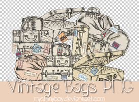 Vintage Bags PNG by MyShinyBoy