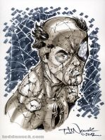 Battle Damaged Spider-Man by ToddNauck