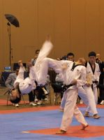Taekwondo U.S. Open 5 by Kicks02