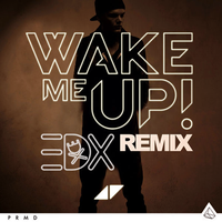 Wake Me Up - Avicii by BiebsDane