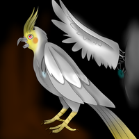 Catie the Cockatiel FNaF by LighterShading