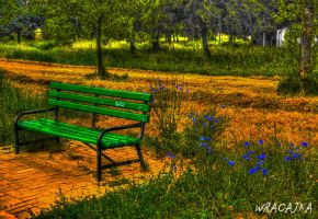 Green Bench...HDR by pszczolabzzz
