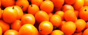 Baby Mandarins 3264x1306 by SyntheticIdea